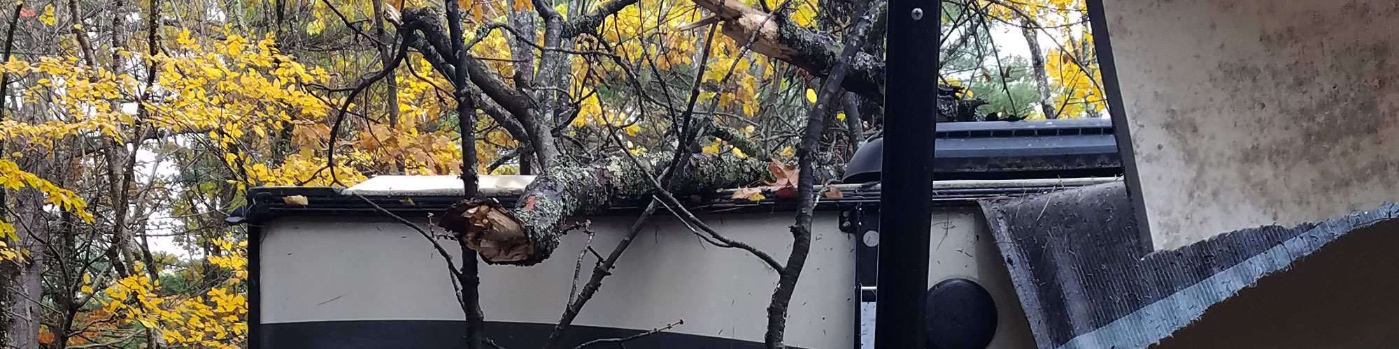 If a Tree Falls on an RV….